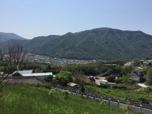 小豆島大観音佛歯寺 花畑
