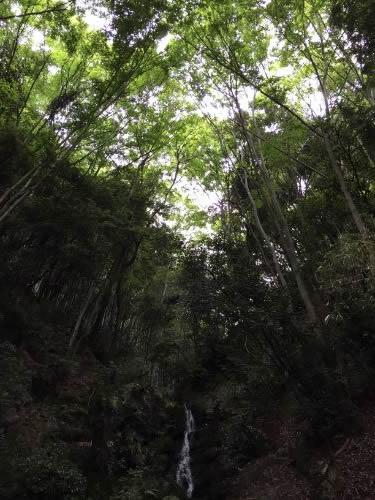 水無瀬の滝