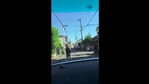 暴走車両 動画